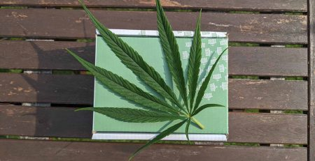 MOMS vs Weed Delivery in 2021 - A marijuana package placed on picnic bench in Toronto